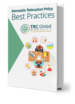 ebook-domestic-relocation-best-practices_1.png