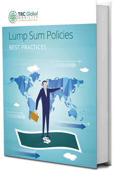 ebook-thumbnail-Lump-Sum-Policies (1).png