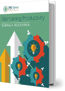 ebook-thumbnail-employee_productive_during_location.png